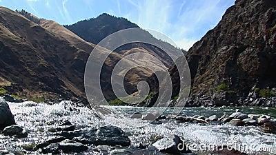 Jetboats auf Höllen-Schlucht Snake River Idaho stock video footage