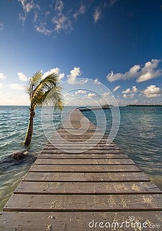 Free Jetty Ower Ocean Royalty Free Stock Photos - 48398468