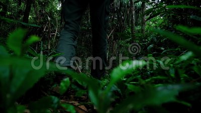 Jeune aventure avec un sac à dos marche dans la nature banque de vidéos