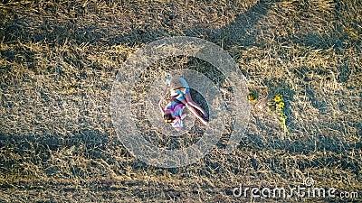 Jeux dans le champ sec Grand champ de foin banque de vidéos