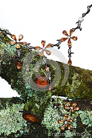Jewelry on dry mossy brunch