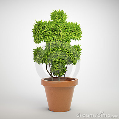 Jigsaw puzzle plant