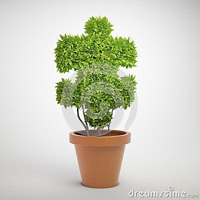 Jigsaw puzzle plant