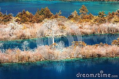 Jiuzhaigou Scenic
