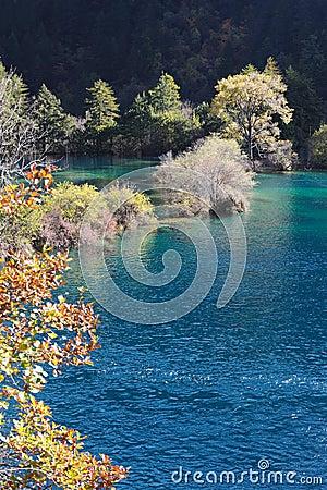 Jiuzhaigou sparkling lake