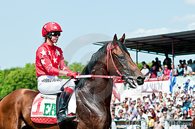 Jockey on horse before the start Editorial Image