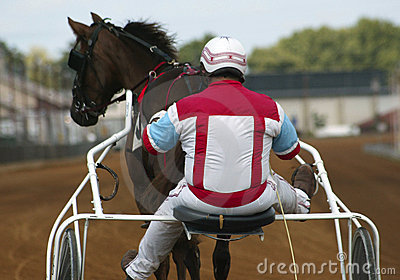 Jockey und Pferd