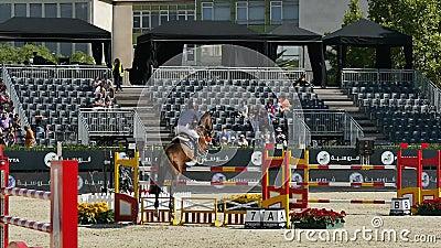 Jockeys in einer weltweiten Konkurrenz stock footage