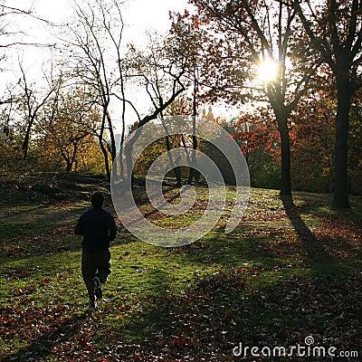 Free Jogger Stock Image - 355631