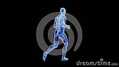 Joggersanatomia ilustracja wektor