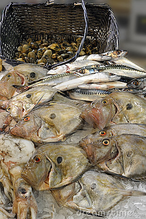 John Dory on display at a fishmonger
