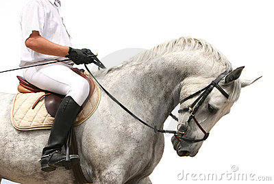 Jokey on dressage horse
