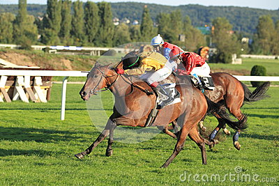 Jolie s legend in horse racing in Prague Editorial Stock Photo