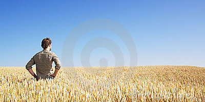 Jonge mens op tarwegebied