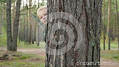 Jonge tiener die zich verschuilt achter boomstam in dennenbos Betrouwbare jongen speelt in de huid en zoekt in het zomerbos stock video