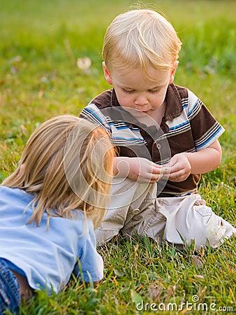 Jongens die in aard spelen