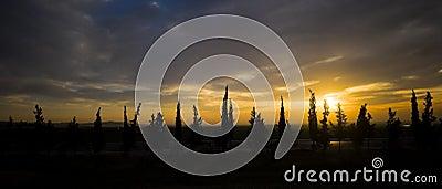 Jordan Sunrise
