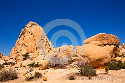 Joshua Tree National Park Intersection rock California