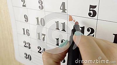 Jour de naissance de la note de la main de la femme avec un marqueur rouge le jour civil 12 Tournée lente Fermer banque de vidéos