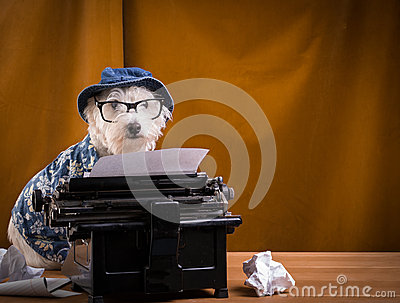 Journalist Dog