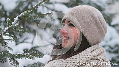 Jovem atraente está rachando um galho da neve e sorrindo maravilhosamente na câmera video estoque