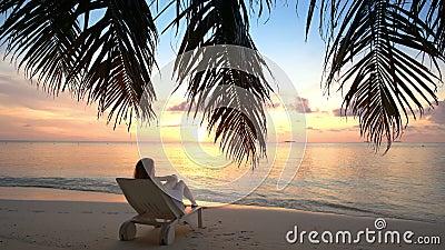 A jovem mulher em uma praia tropical está admirando o por do sol vídeos de arquivo