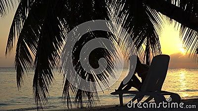 Jovem mulher no por do sol pelo oceano sob uma palmeira video estoque