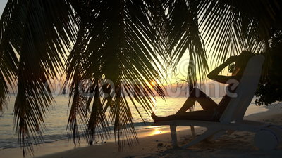 Jovem mulher no por do sol pelo oceano sob uma palmeira filme