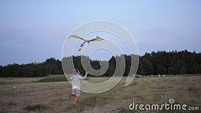 Joyeux garçon, enfant mâle actif court dans la prairie avec cerf-volant pendant le week-end dans la forêt sur fond d'arbres et de banque de vidéos