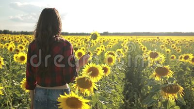 Joyful girl with sunflower enjoying nature stock video