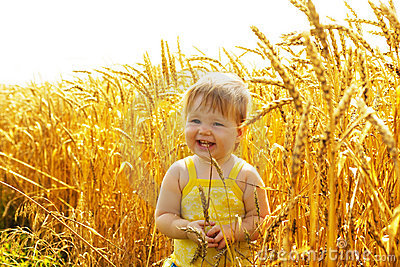Joyful kid in wheat field