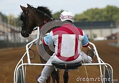 Jóquei e cavalo