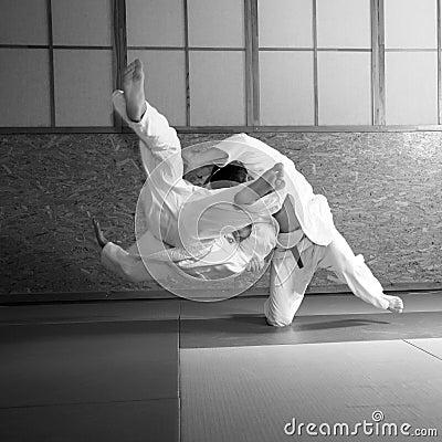 Free Judo Fight Royalty Free Stock Photos - 5430238