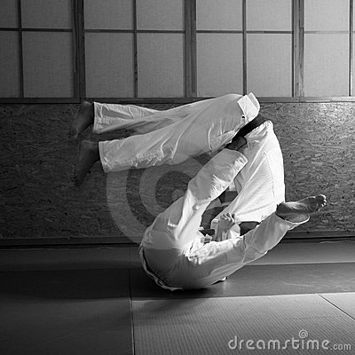 Free Judo Fight Stock Photography - 5430242