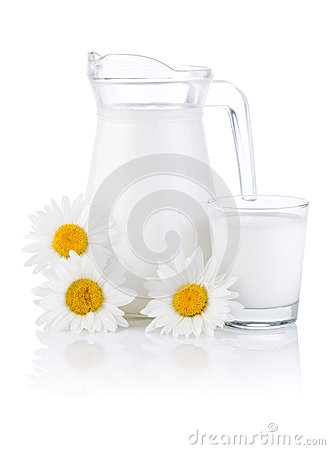 Jug milk, glass and three chamomile flowers