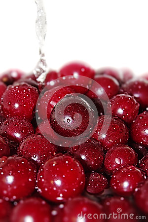 Juicy cherry in water