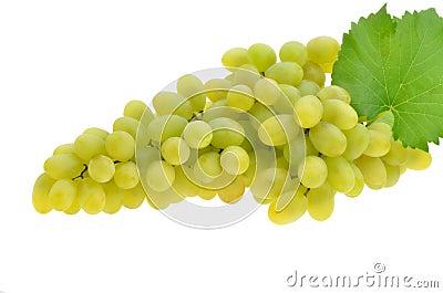 Juicy ripe grapes