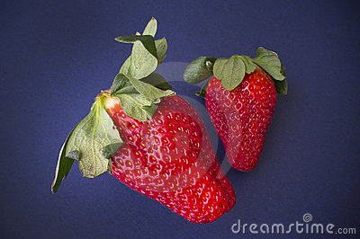 Juicy Strawberries Stock Photography - Image: 20988442
