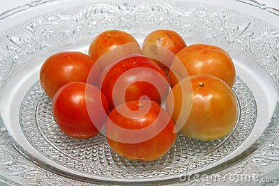 Juicy Tomatoes