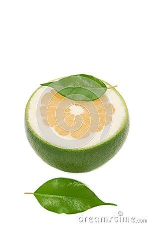 Juicy white grapefruit