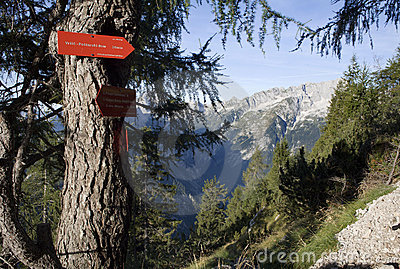 Julian alps - turist directions on the spruce
