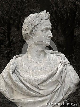 Free Julius Caesar Bust Royalty Free Stock Image - 6557116