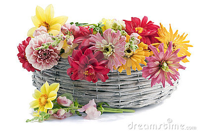 July European flowers in basket