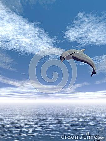 Jump_Dolphin_V