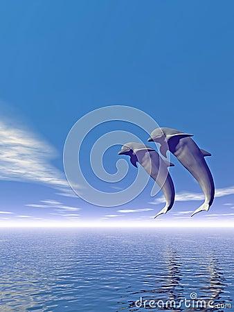 Jump_Dolphin3_V