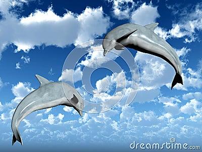 Jump Dolphins