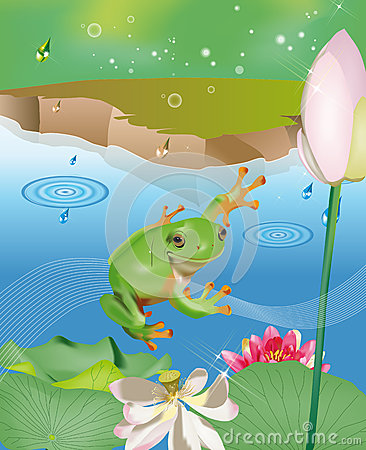 Jumping frog in pond