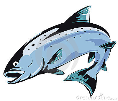 Clip Art Salmon Clip Art salmon stock illustrations 7938 vectors clipart dreamstime