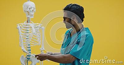 Junge Ärztin erklärt menschliche Anatomie stock footage