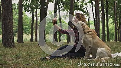 Junge Dame macht selfie mit ihrem Hund stock footage